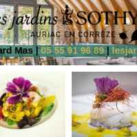 Restaurant Sothys